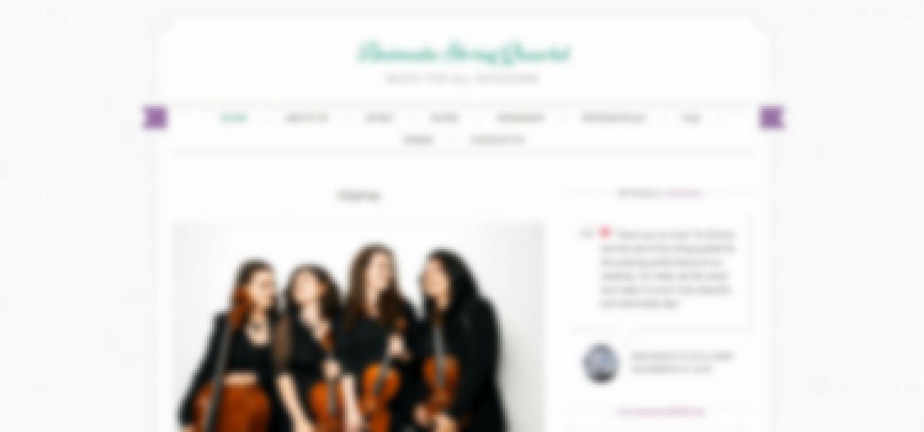 animata string quartet