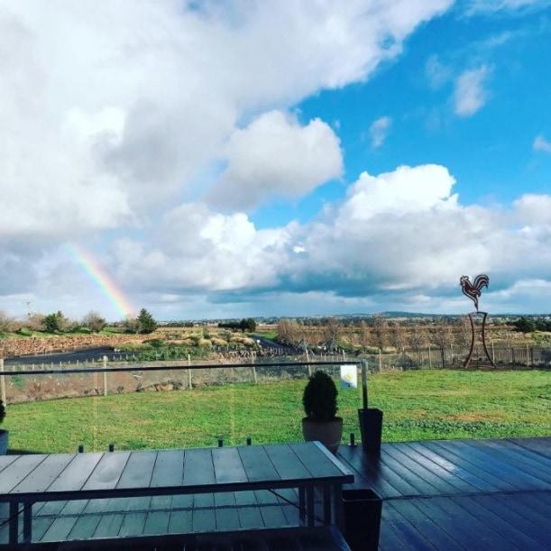 galli estate winery melbourne