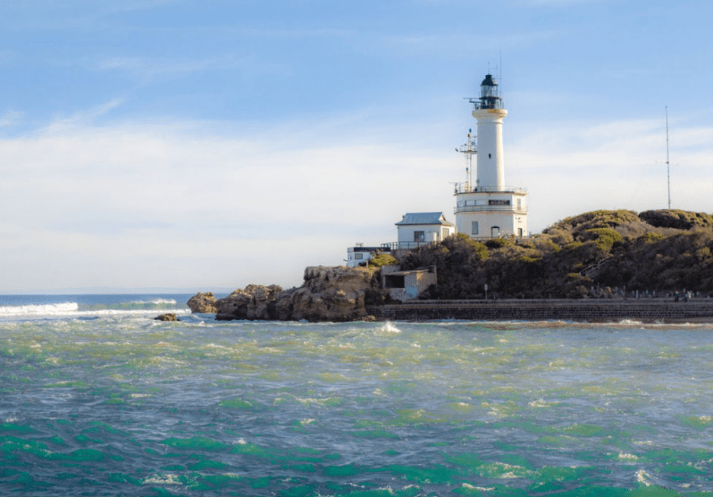 geelong & bellarine peninsula google search go