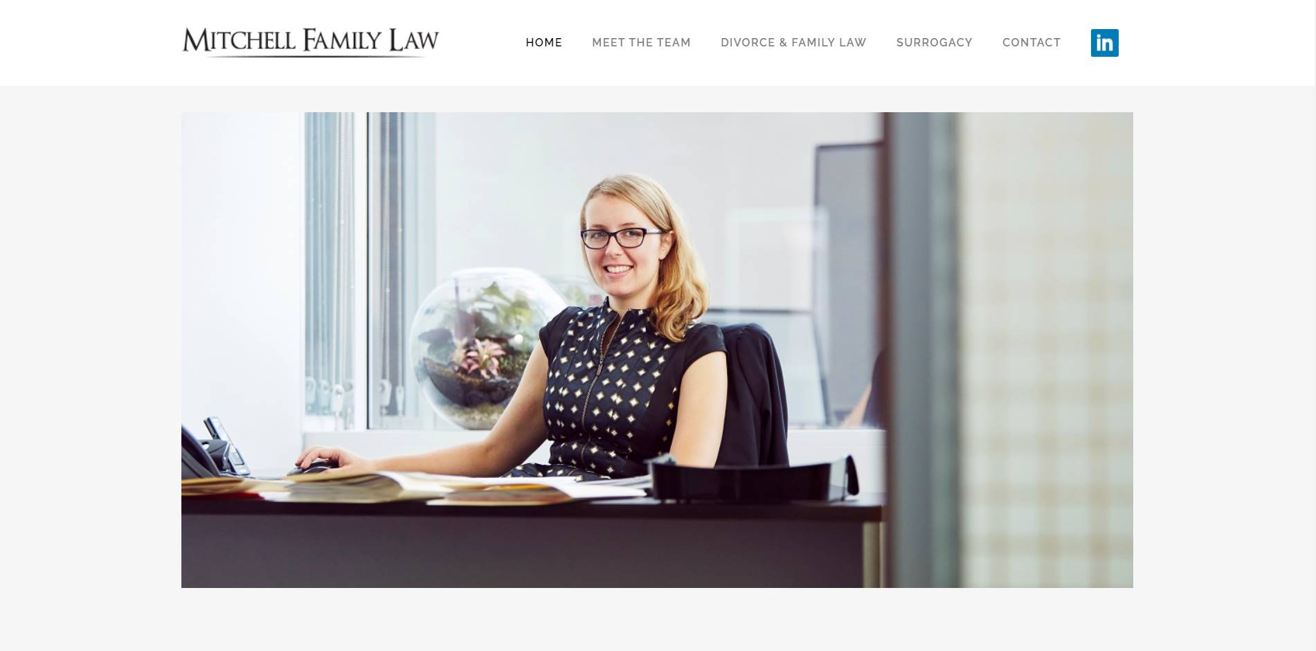 mitchell family law