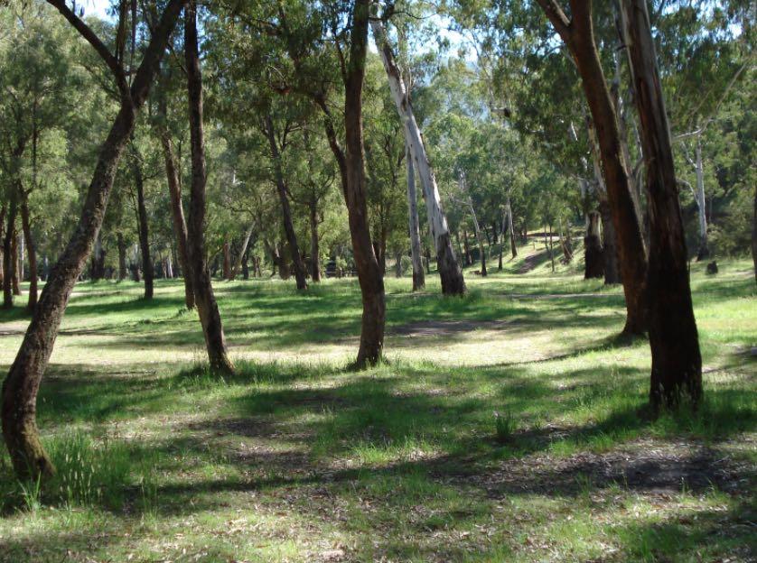 sheepyard park ask melbourne