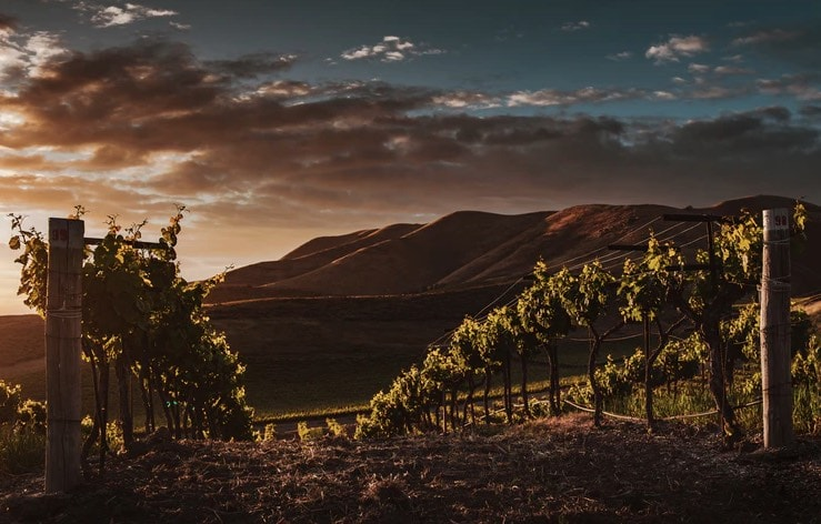 wineries ask melbourne